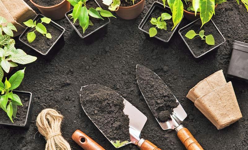 Κηπουρικές Εργασίες